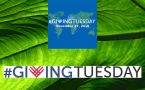 Giving Tuesday logo and leaf background
