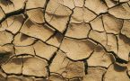Cracked dried mud during a drought