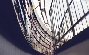 curved shelves of public library lined with books