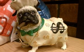 Ceramic piggy bank shaped like pug dog with dollar signs and cigar.
