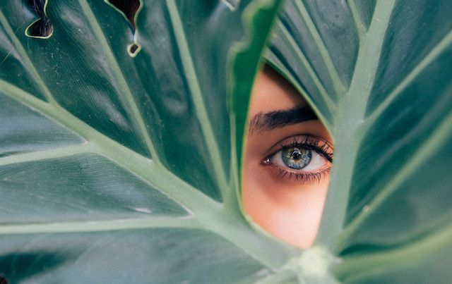 Wide green leaves with woman's eye peering through.