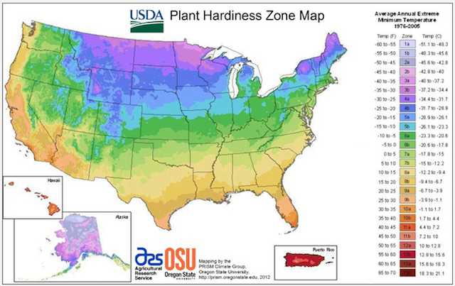 Colorful map of United States based on plant hardiness from USDA