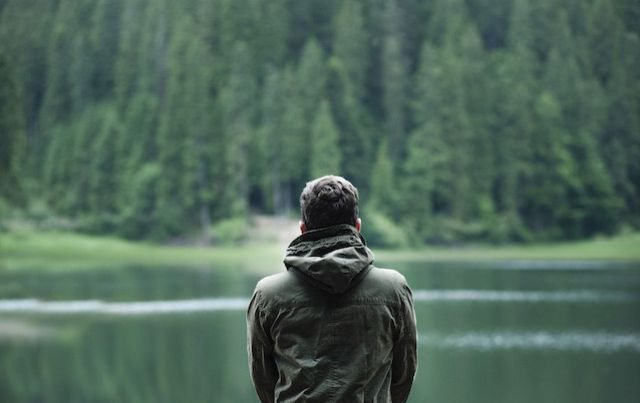 A man's back as he looks out across a lake and forest