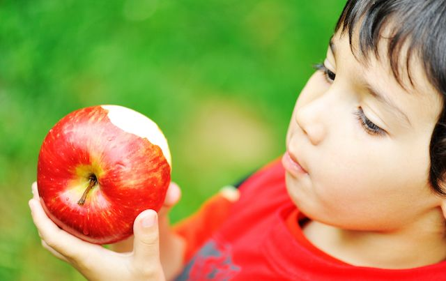 Child looking at big red apple with a bite out of it