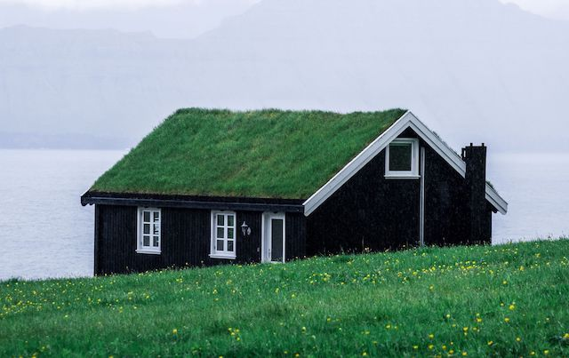 A red cottage on the shore with a green grass roof.