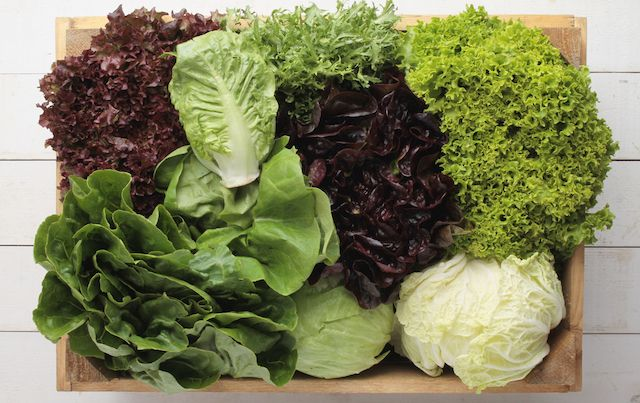 Wooden box filled with various kinds of lettuce and leafy greens