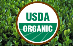 USDA Organic logo on plant backdrop