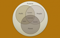 Venn diagram of quadruple bottom line - people, profit, planet, purpose.