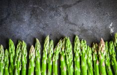 Fresh asparagus tips lined up on slate countertop.