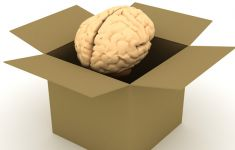 brain rising from cardboard box