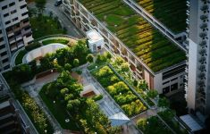 Aerial view of urban gardens and roof plantings