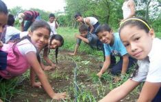 Group of kids gardening