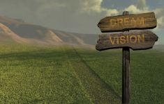 Old wooden direction sign pointing two ways: DREAM and VISION on grass path.