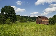 barn among green fields and blue sky