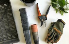 Gloves, pruning shears, and other gardening supplies on white table.