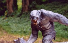 https://www.flickr.com/photos/genista/