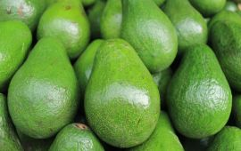Close up of stacked green avocados.