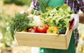 Person holding wooden box of fresh picked vegetables