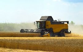 Harvesting machinery works through wheat field.