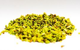 Yellow fennel seeds in a pile on white background.