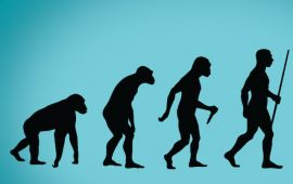 Black silhouettes on blue background of evolutionary stages of man